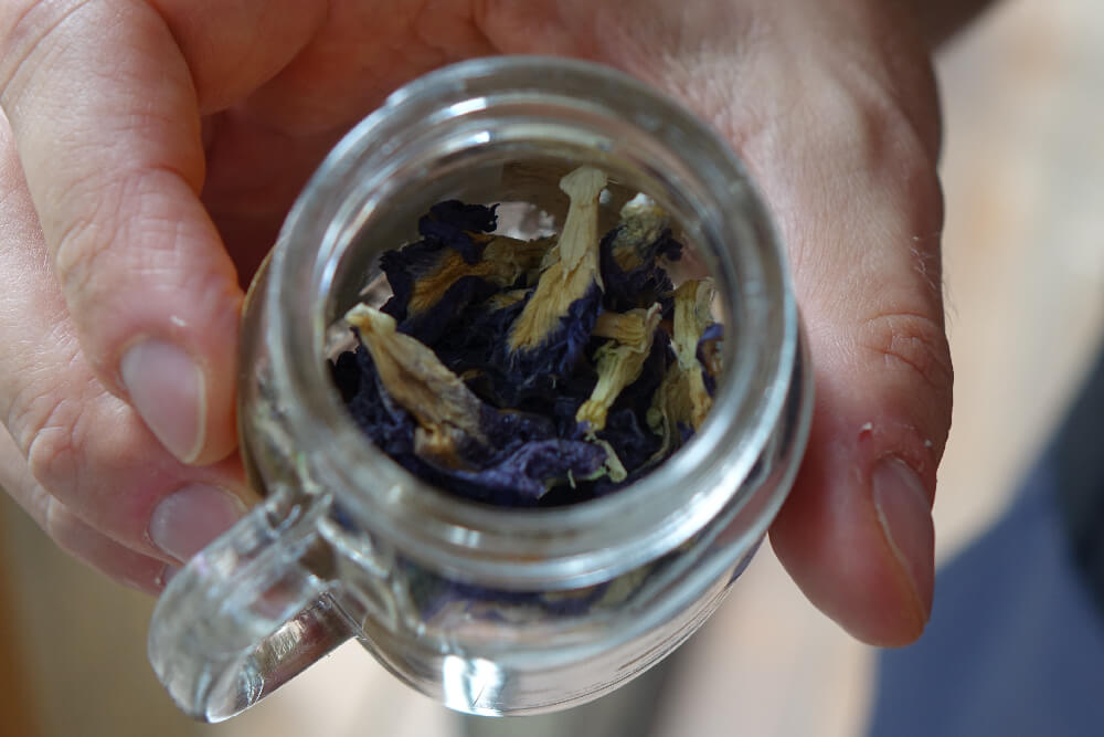Getrocknete Clitoria Ternatea Blueten