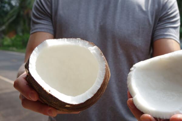 Henning haelt eine frisch geerntete Kokosnuss in der Hand