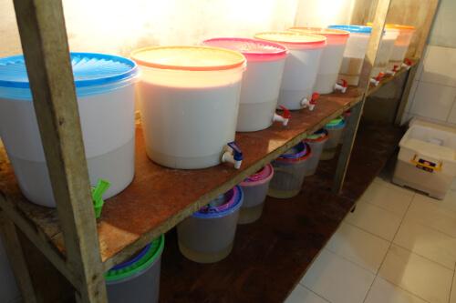 Fermentation in der Kokosoel Herstellung