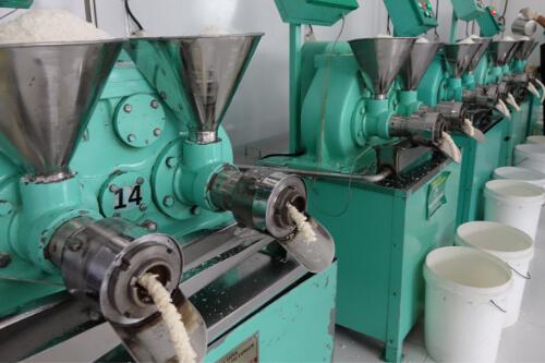 Expeller Maschine in der Kokosoelherstellung durch Kaltpressung