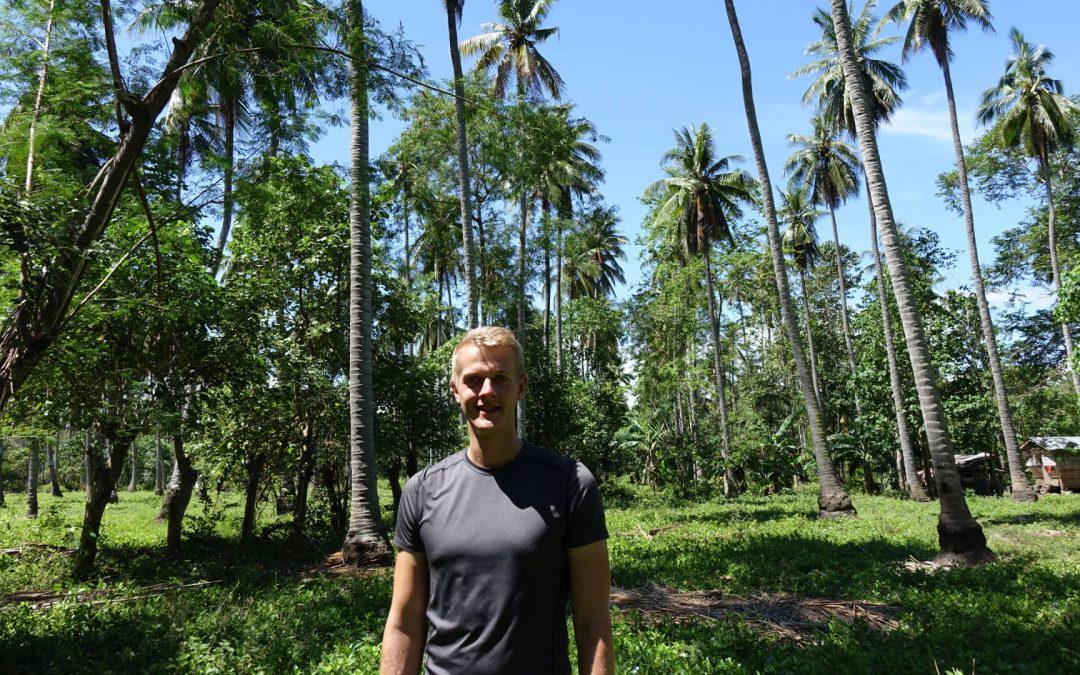 Kokosöl kaufen: Wo, was und wie teuer – der Qualitätsvergleich
