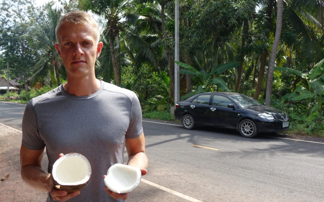 Kokosöl für die Haut: Erfahrungen, Anwendungen und Wirkung