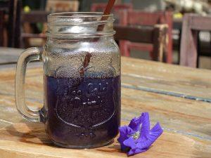 Blauer Eistee aus der Clitoria Ternatea Bluete