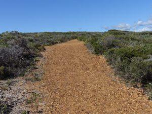 Aus unserem Jahresrueckblick 2016: ein Weg an der Kueste Yallingups, Australien